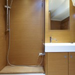 Jeanneau 509 Shower